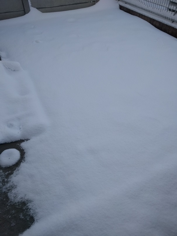 雪のおかげで発電力回復!?
